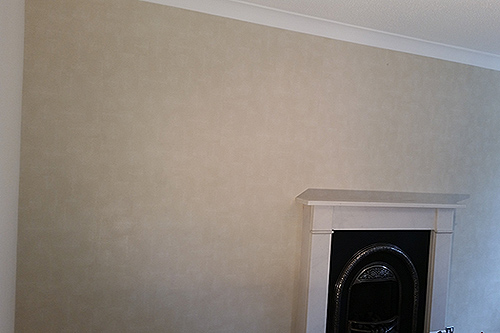 designer wallpaper on a feature wall
